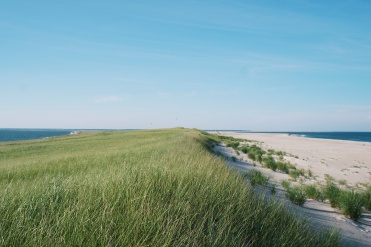 Monomoy Crossover, looking north