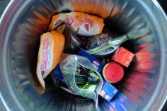 Leftover seal food